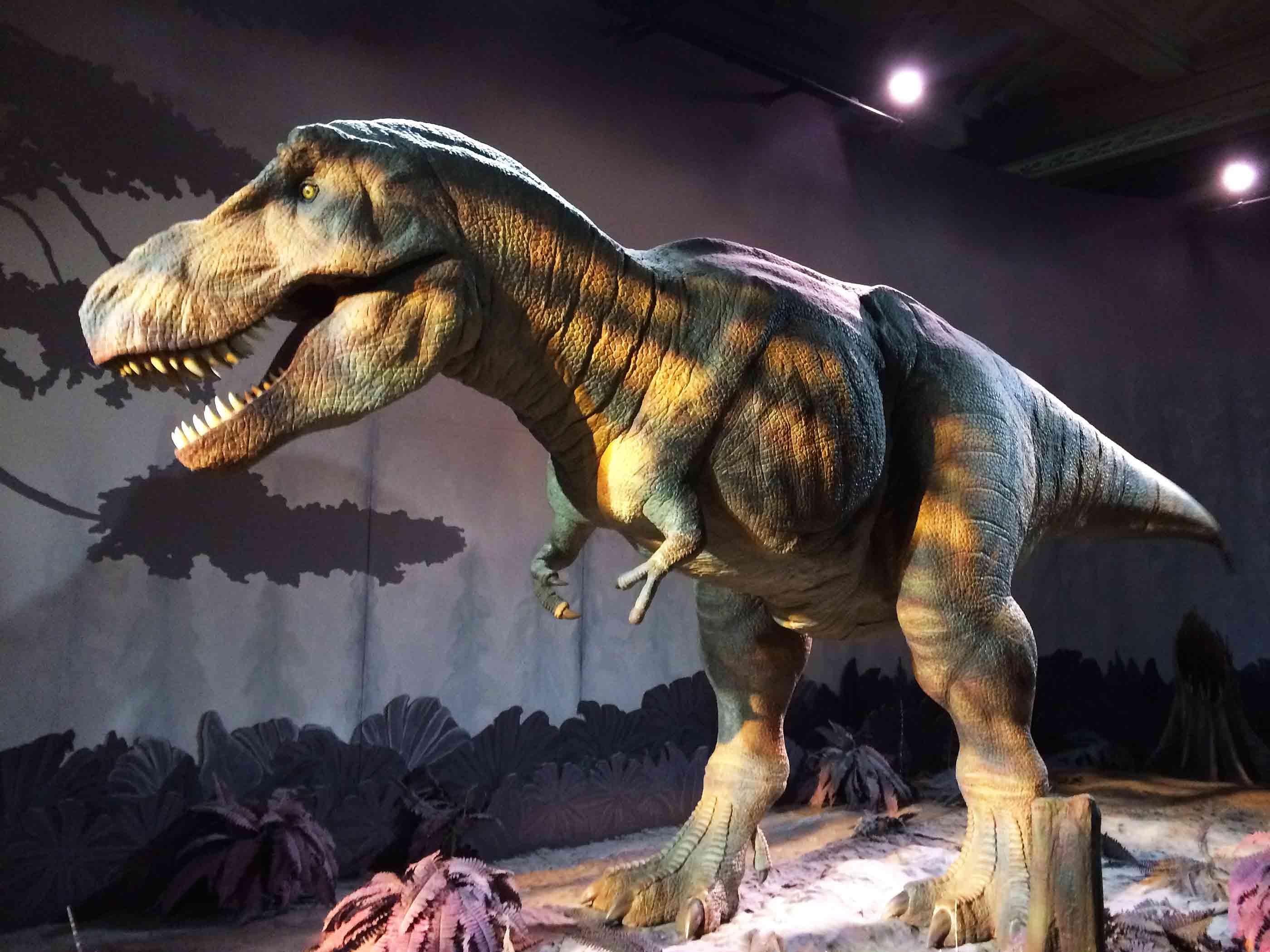 Natural History Museum Dinosaur Show