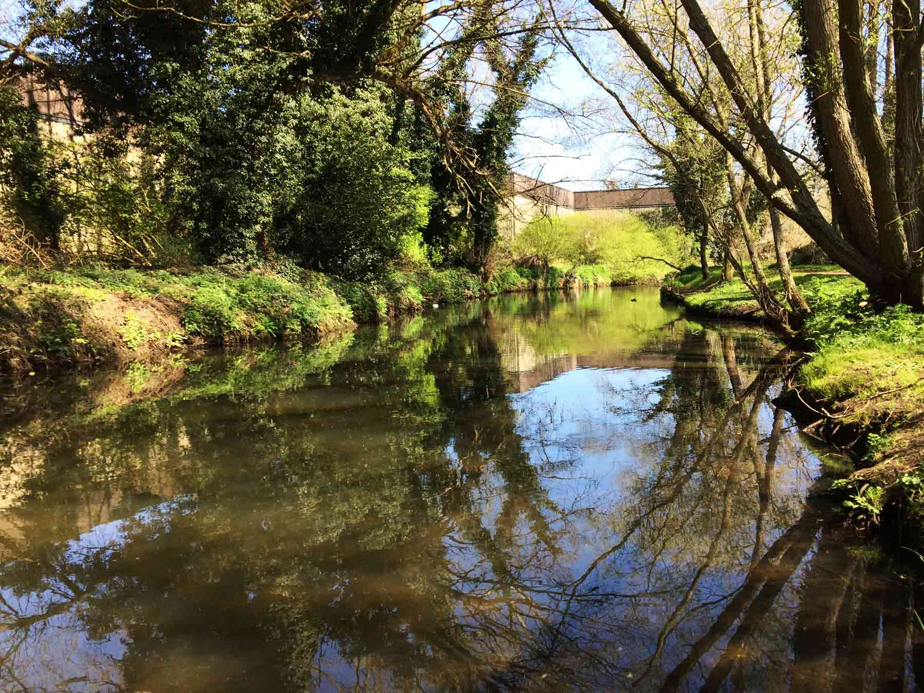 Hawley Meadows, Camberley